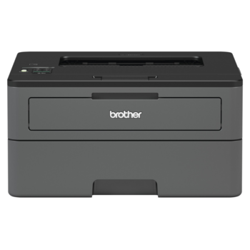 BROTHER HL-L2372DN + Flash disk 32GB - 1